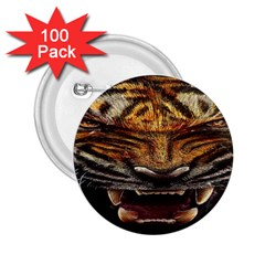 Tiger Face 2 25  Buttons (100 Pack)