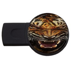 Tiger Face Usb Flash Drive Round (4 Gb) by BangZart