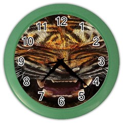 Tiger Face Color Wall Clocks