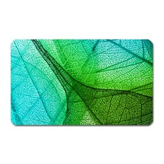 Sunlight Filtering Through Transparent Leaves Green Blue Magnet (rectangular)