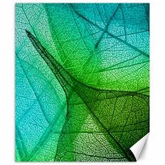 Sunlight Filtering Through Transparent Leaves Green Blue Canvas 20  X 24