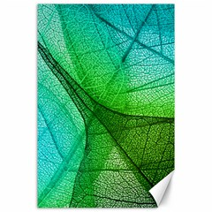 Sunlight Filtering Through Transparent Leaves Green Blue Canvas 24  X 36
