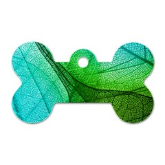 Sunlight Filtering Through Transparent Leaves Green Blue Dog Tag Bone (two Sides) by BangZart