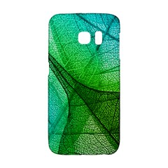 Sunlight Filtering Through Transparent Leaves Green Blue Galaxy S6 Edge by BangZart