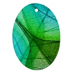 Sunlight Filtering Through Transparent Leaves Green Blue Oval Ornament (Two Sides) Back
