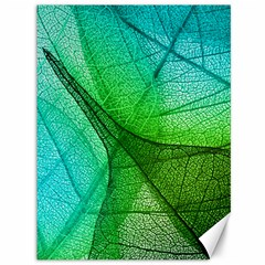 Sunlight Filtering Through Transparent Leaves Green Blue Canvas 36  X 48   by BangZart
