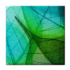 Sunlight Filtering Through Transparent Leaves Green Blue Face Towel by BangZart