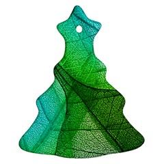 Sunlight Filtering Through Transparent Leaves Green Blue Ornament (christmas Tree)