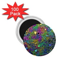Starbursts Biploar Spring Colors Nature 1 75  Magnets (100 Pack)  by BangZart