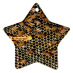 Queen Cup Honeycomb Honey Bee Ornament (star)