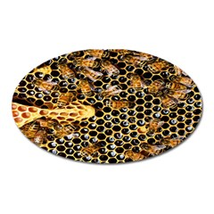 Queen Cup Honeycomb Honey Bee Oval Magnet by BangZart