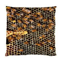 Queen Cup Honeycomb Honey Bee Standard Cushion Case (one Side)