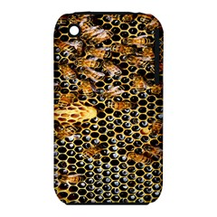 Queen Cup Honeycomb Honey Bee Iphone 3s/3gs