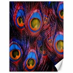 Pretty Peacock Feather Canvas 12  X 16   by BangZart
