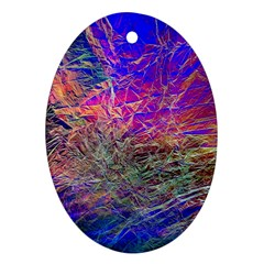 Poetic Cosmos Of The Breath Oval Ornament (two Sides)
