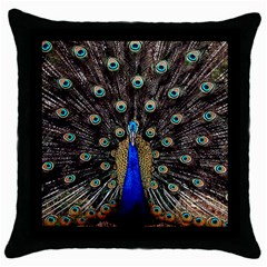 Peacock Throw Pillow Case (black) by BangZart