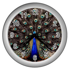 Peacock Wall Clocks (silver)