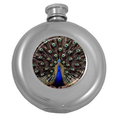 Peacock Round Hip Flask (5 Oz)