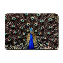 Peacock Small Doormat  by BangZart
