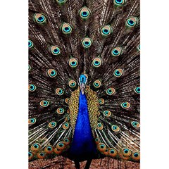Peacock 5 5  X 8 5  Notebooks by BangZart