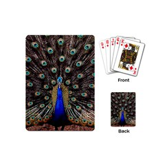 Peacock Playing Cards (mini)  by BangZart