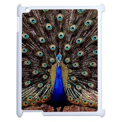 Peacock Apple Ipad 2 Case (white) by BangZart