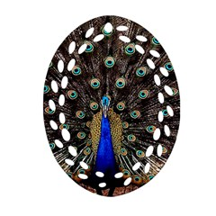 Peacock Oval Filigree Ornament (two Sides) by BangZart