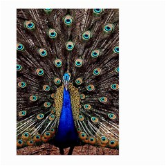Peacock Large Garden Flag (two Sides) by BangZart