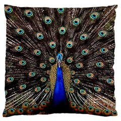 Peacock Large Cushion Case (one Side)