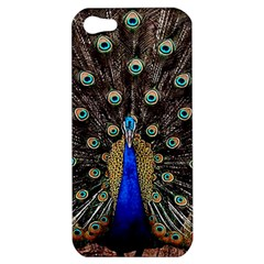 Peacock Apple Iphone 5 Hardshell Case by BangZart