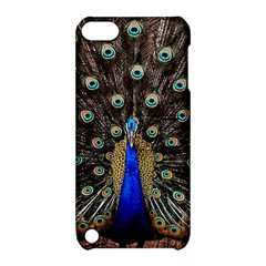 Peacock Apple Ipod Touch 5 Hardshell Case With Stand by BangZart