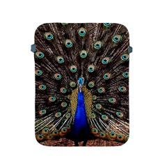 Peacock Apple Ipad 2/3/4 Protective Soft Cases