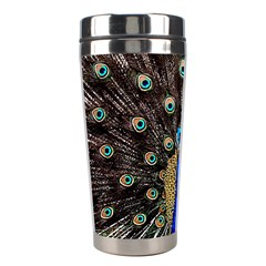 Peacock Stainless Steel Travel Tumblers by BangZart