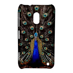 Peacock Nokia Lumia 620 by BangZart