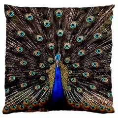 Peacock Large Flano Cushion Case (one Side) by BangZart