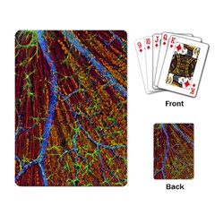 Neurobiology Playing Card