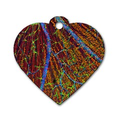 Neurobiology Dog Tag Heart (two Sides)