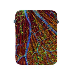 Neurobiology Apple Ipad 2/3/4 Protective Soft Cases by BangZart