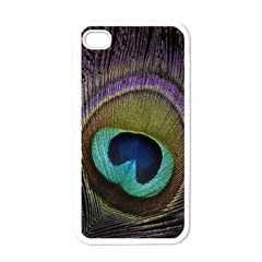 Peacock Feather Apple Iphone 4 Case (white) by BangZart