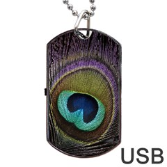 Peacock Feather Dog Tag Usb Flash (one Side) by BangZart
