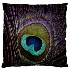 Peacock Feather Standard Flano Cushion Case (one Side)