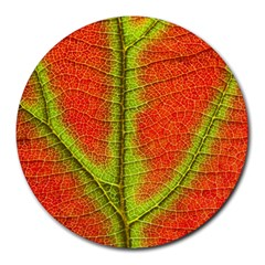 Nature Leaves Round Mousepads