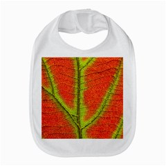 Nature Leaves Amazon Fire Phone by BangZart