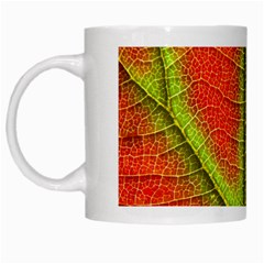 Nature Leaves White Mugs by BangZart