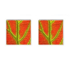 Nature Leaves Cufflinks (square)