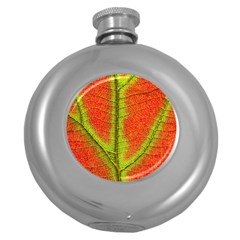 Nature Leaves Round Hip Flask (5 Oz) by BangZart