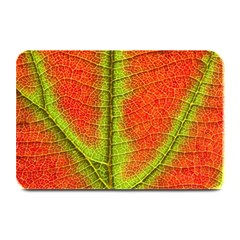 Nature Leaves Plate Mats by BangZart