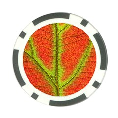 Nature Leaves Poker Chip Card Guard by BangZart
