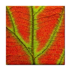 Nature Leaves Face Towel