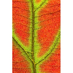 Nature Leaves 5 5  X 8 5  Notebooks by BangZart